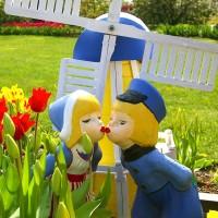 Ogród holenderski – pełen kwitnących rozwiązań